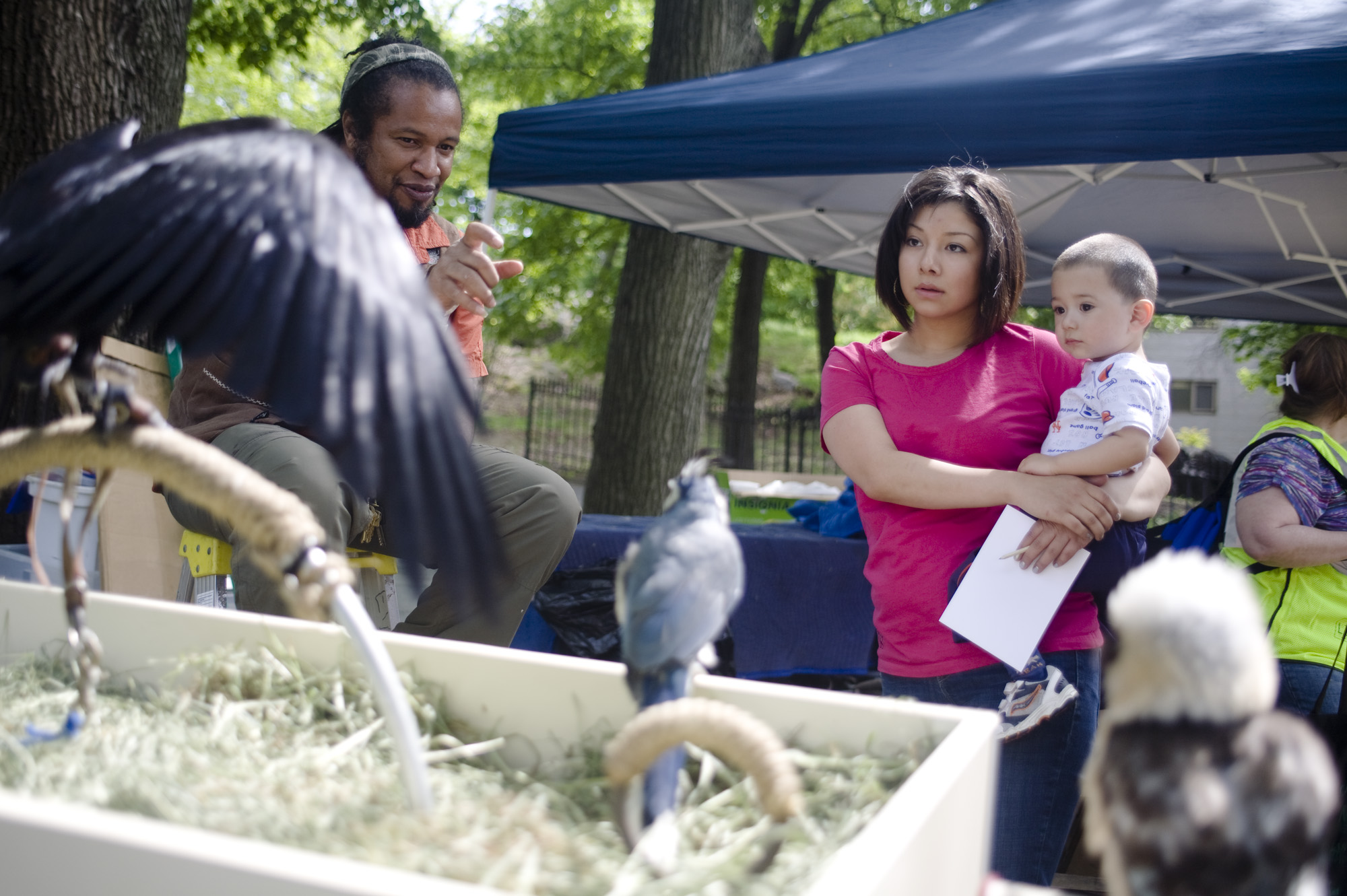 Fifth South Bronx Earth Fest is coming up