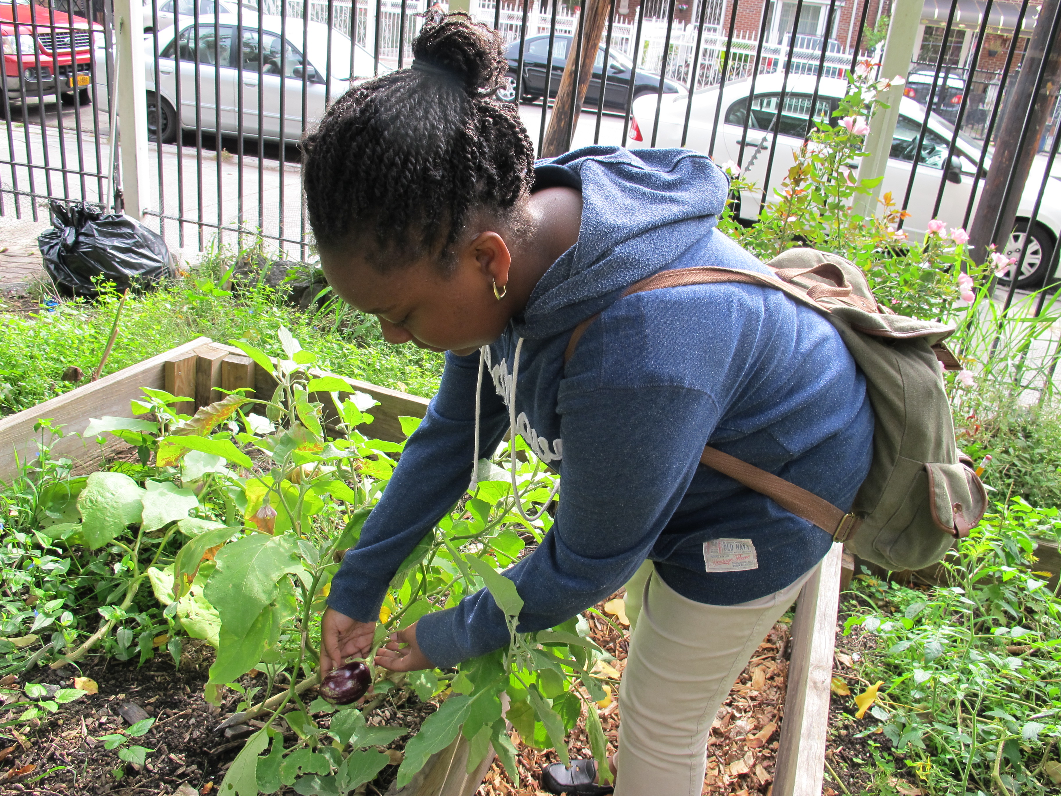 Young gardener helps green Padre Plaza