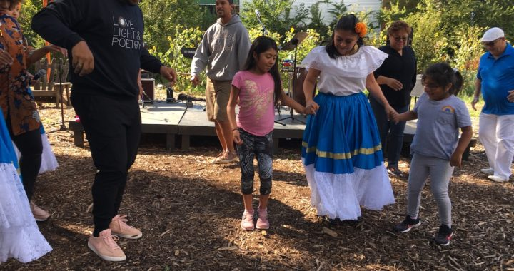 Brook Park hosts Stage, Garden, Rumba