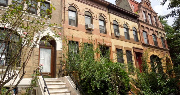 Artifacts of Alexander Avenue: New exhibit shows off Mott Haven's historic district